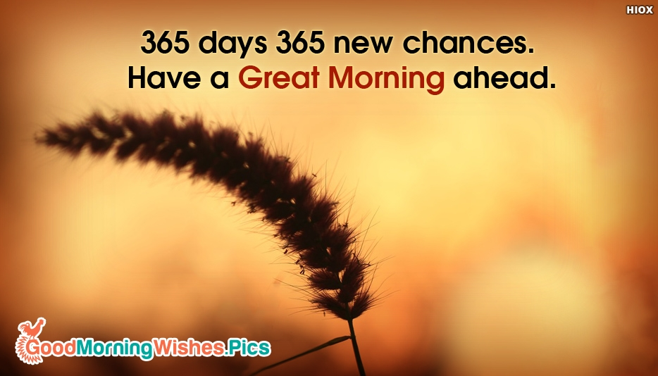 365 Days 365 New Chances. Have a Great Morning Ahead - Awesome Good Morning Images