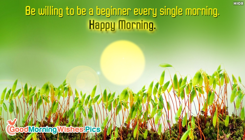 Be Willing to be a Beginner Every Single Morning. Happy Morning - Inspirational Good Morning Quotes and Images