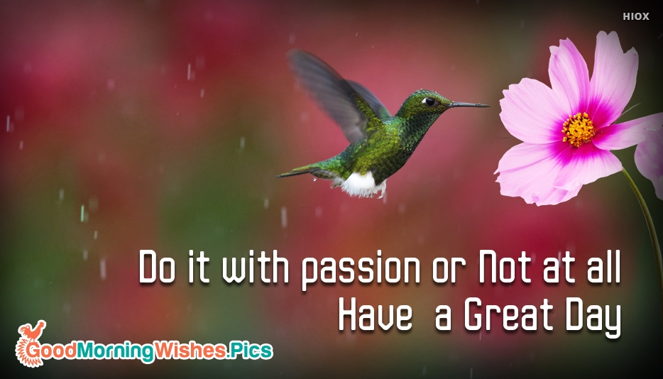 Do it with Passion or Not at All. Have a Great Day - Good Morning Nature Images