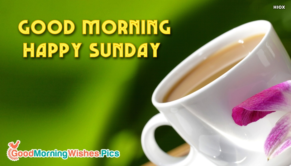 Good Morning and Happy Sunday - Good Morning Images for Sunday