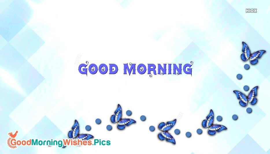 Good Morning and Pic