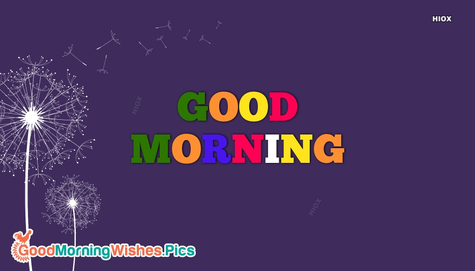 Good Morning Colourful