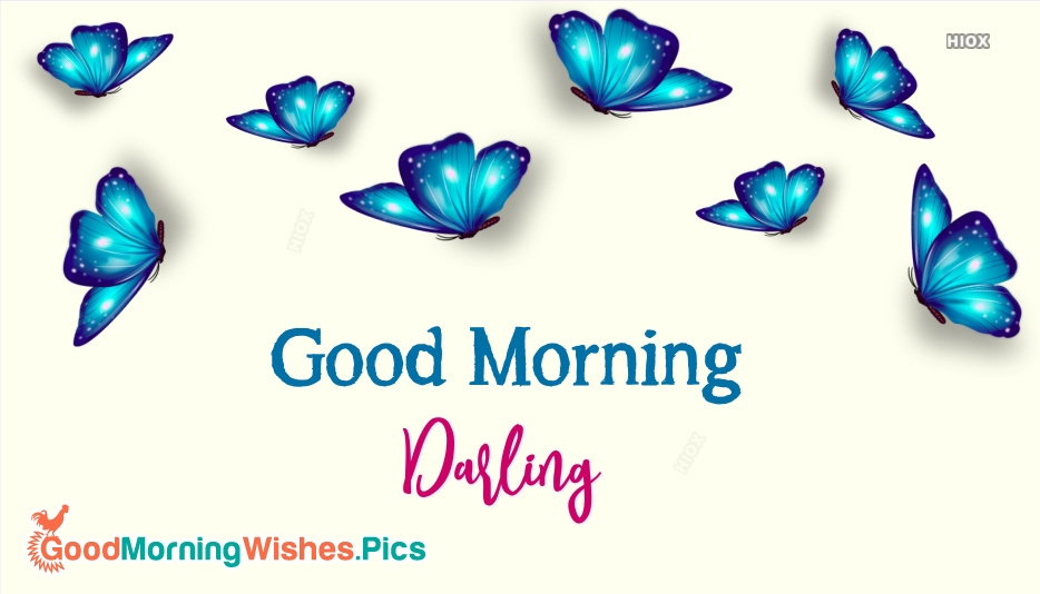 Good Morning Darling Pic
