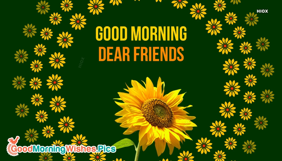 Good Morning Dear Friends Wallpaper
