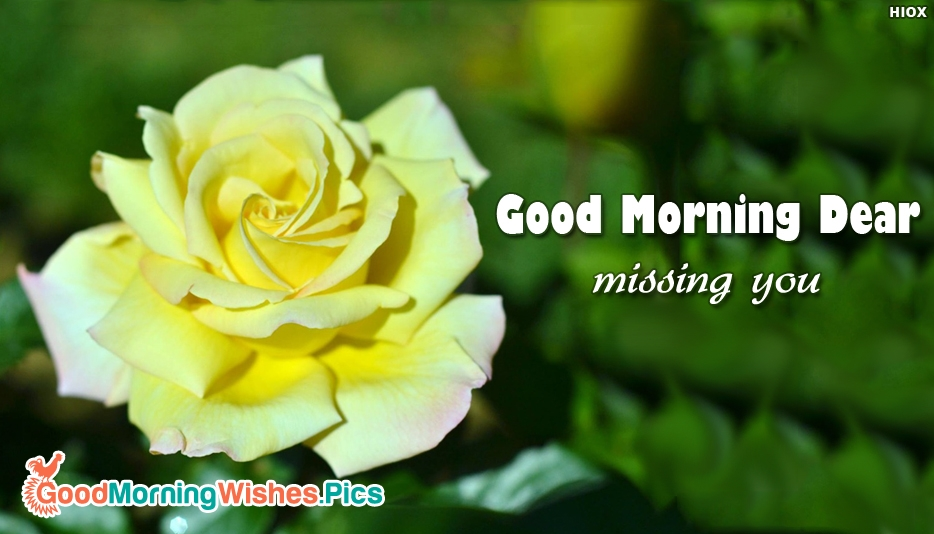 Good Morning Dear Missing You - Good Morning Sweetheart Images