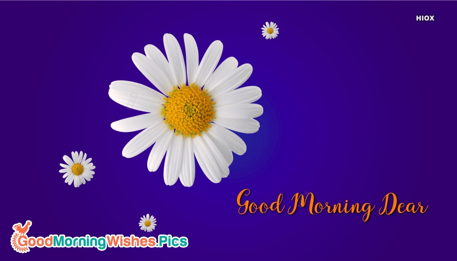 Good Morning Dear With Flower Image
