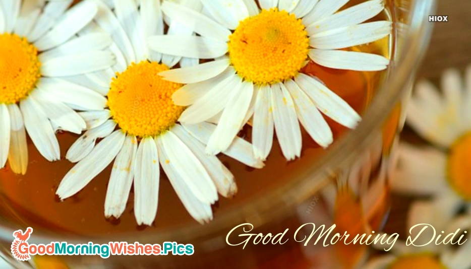 Good Morning Images for Sister