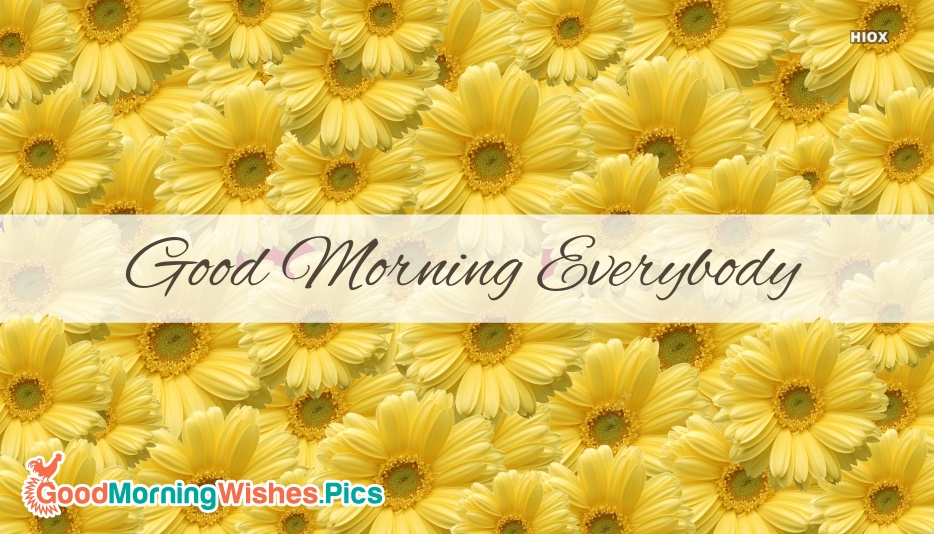 Good Morning Images for Everyone
