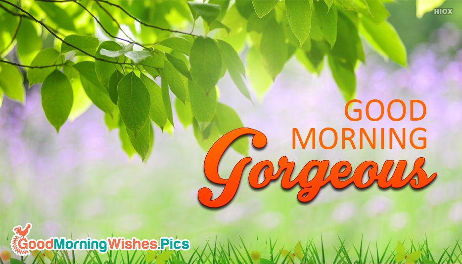 Good Morning Gorgeous Girl - Cute Romantic Good Morning Wishes With Beautiful Images For Her