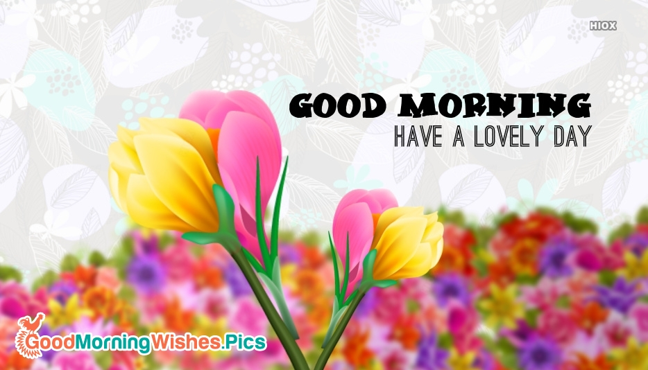 Good Morning Have A Lovely Day Flowers