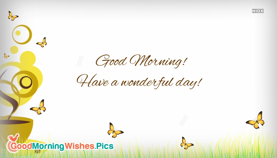 Good Morning! Have A Wonderful Day!