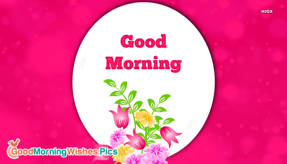 Good Morning Images Of Beautiful Flowers