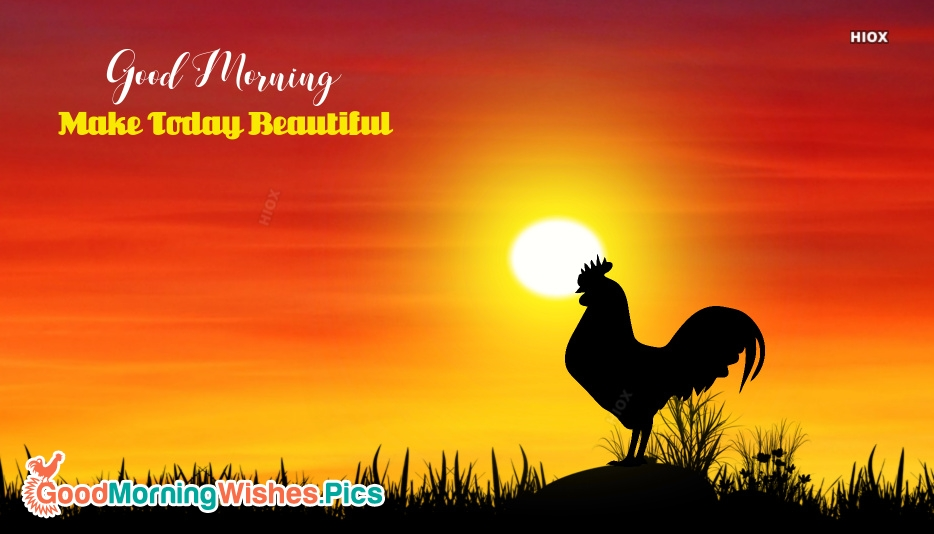 Good Morning Rooster Pictures, Images
