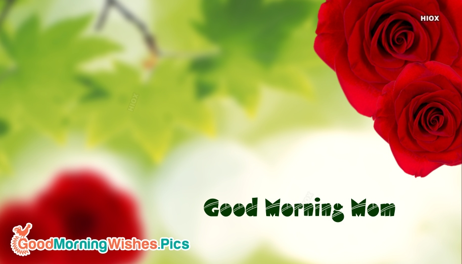 Good Morning Mom Quotes : Good morning mom images
