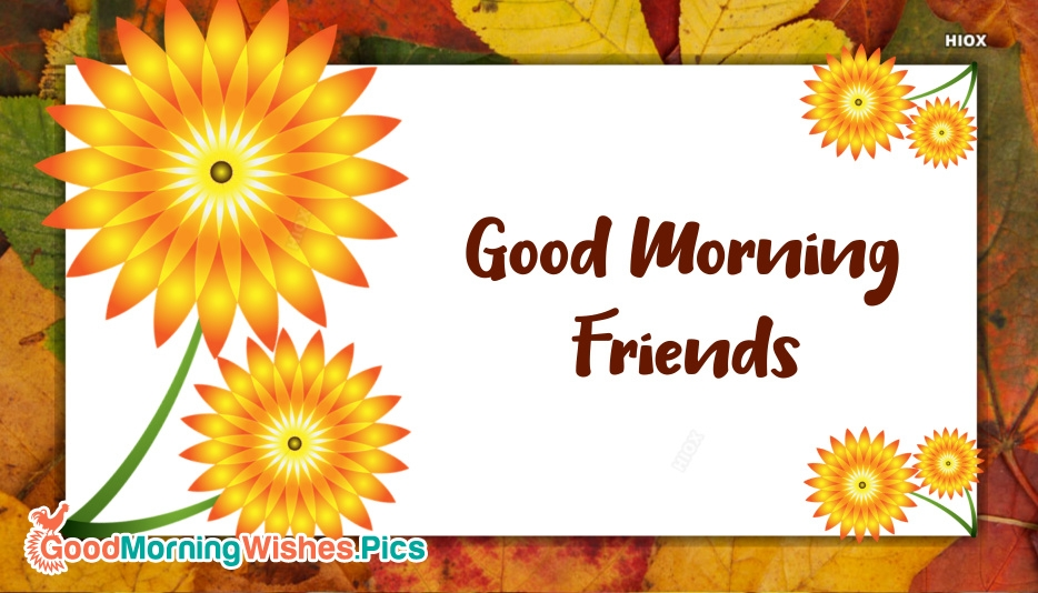 Good Morning My All Friends