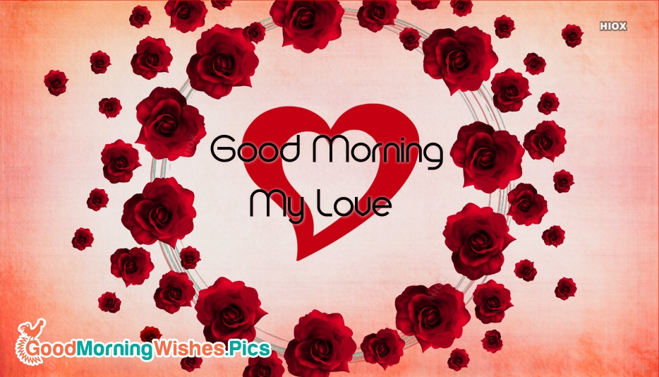 Good morning pics with roses
