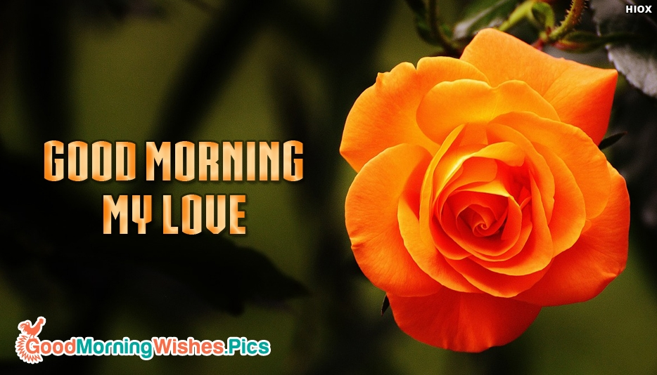 Good Morning My Love In Spanish Pics - impremedia.net