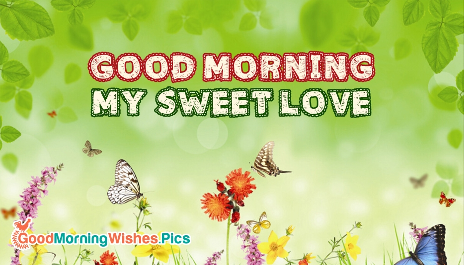 Good Morning My Sweet Love Wallpaper Wallpaper sportstle