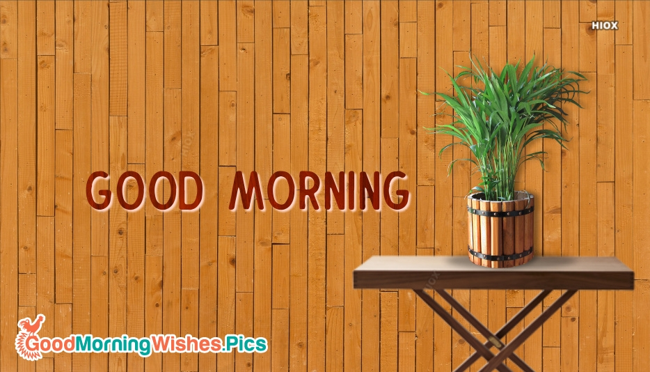 Good Morning Images With Plants Pictures