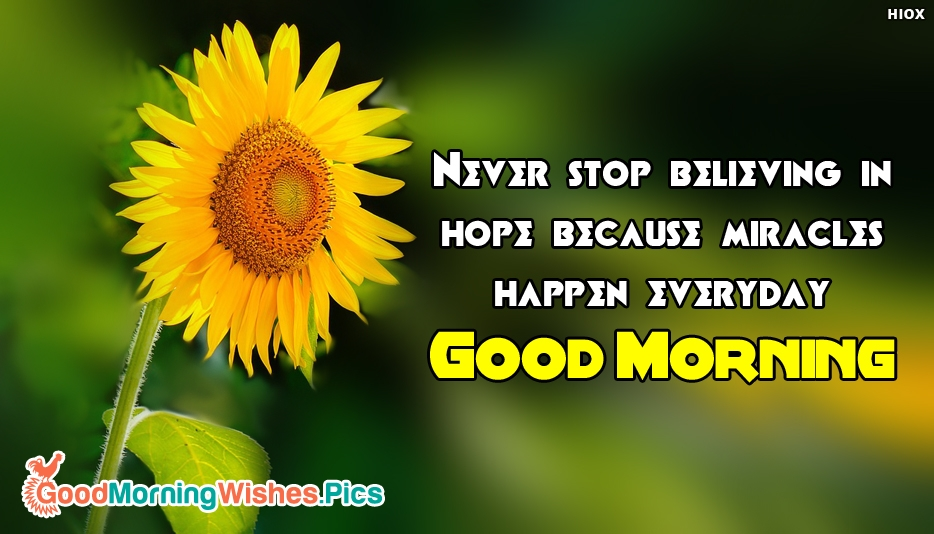 Good Morning Sayings - Never Stop Believing in Hope Because Miracles happen Everyday. Good Morning - Good Morning Wallpaper Images, Photos