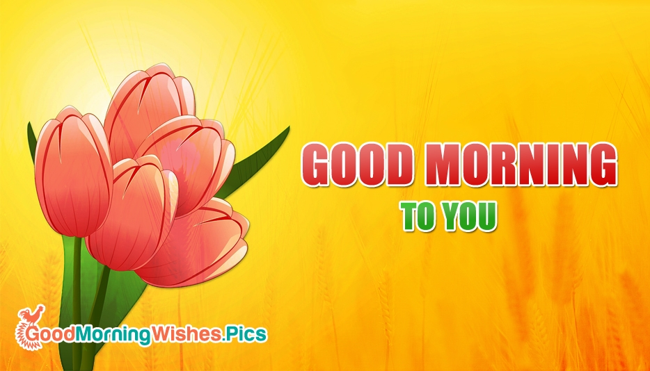 Good Morning Everyone Gee Cover : Good morning images for fb cover