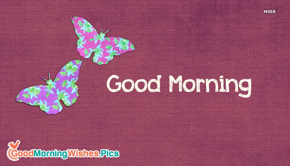 Good Morning Wallpaper With Butterfly