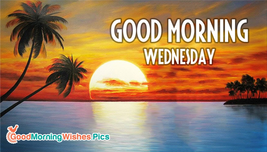 Good Morning Everyone In Email : Good morning wednesday goodmorningwishes pics