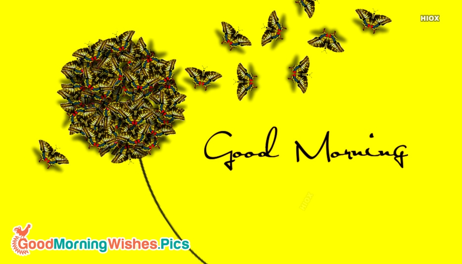Good Morning With Butterflies
