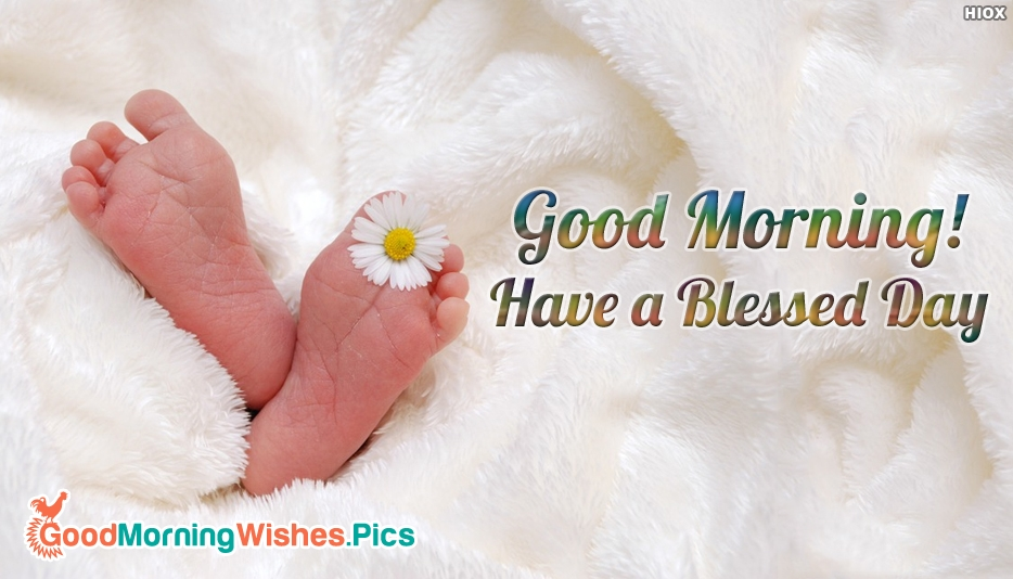 Good Morning Baby Quote : Good morning baby images