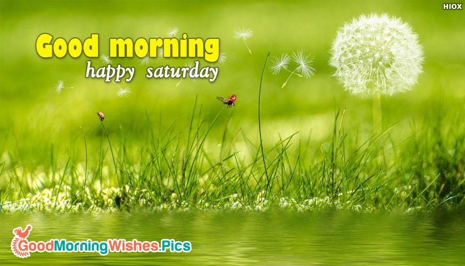 Good Morning With Happy Saturday - Good Morning Images for Saturday