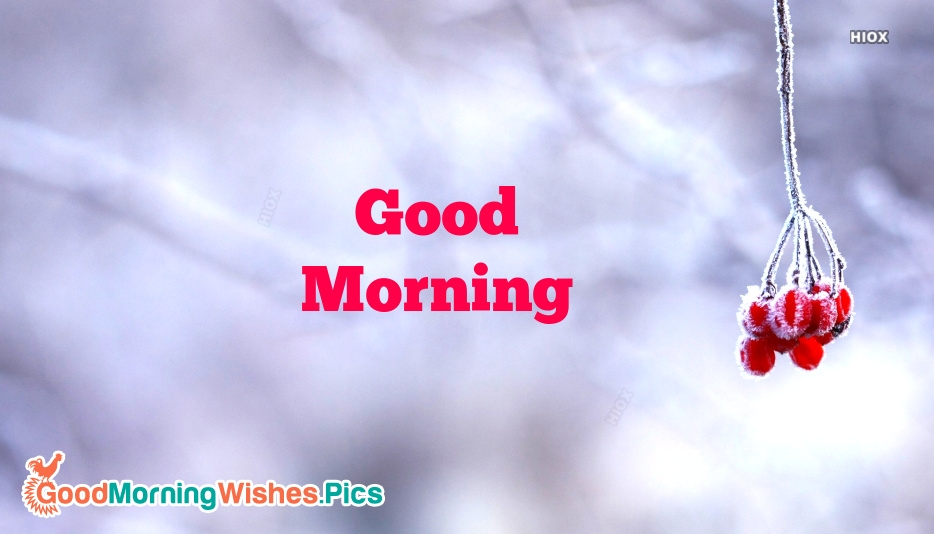 Good Morning With Nature Hd