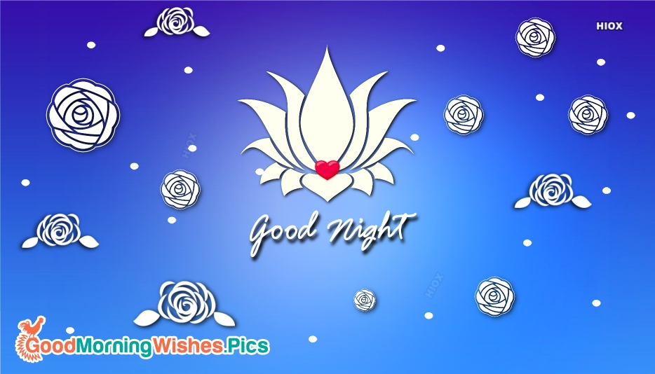 Good Night Flower