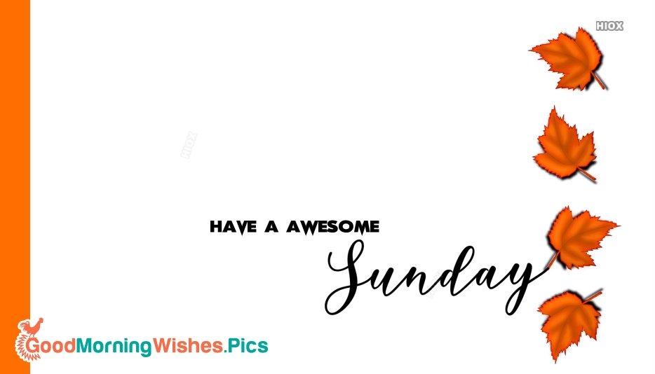 Have A Awesome Sunday