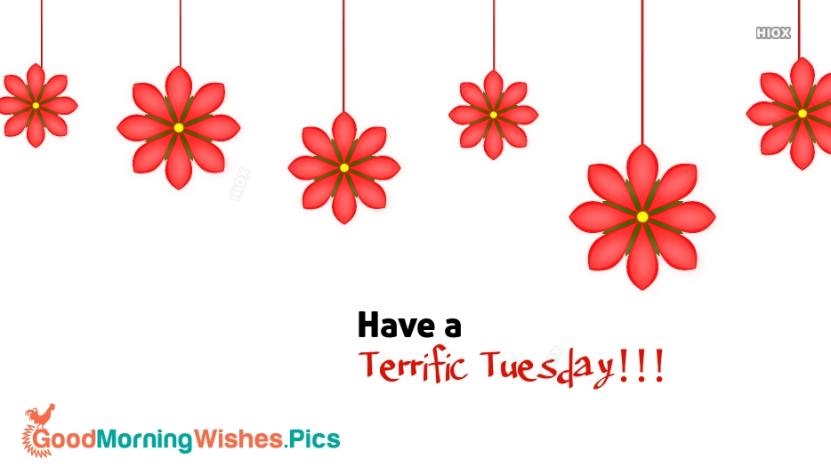 Have A Terrific Tuesday Images