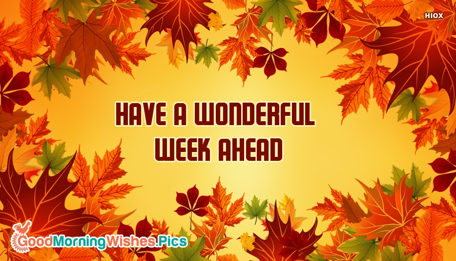 Have A Wonderful Week Ahead