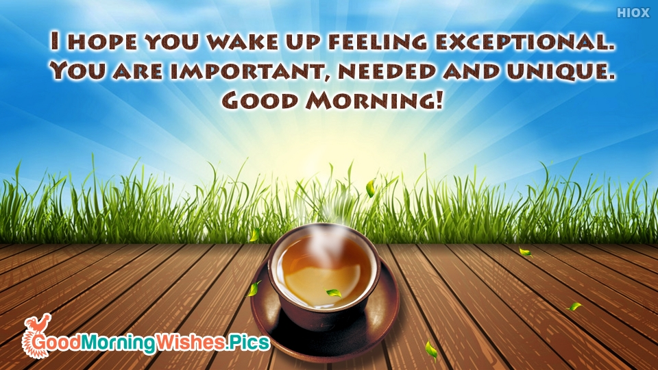 I Hope You Wake Up Feeling Exceptional. You Are Important, Needed And Unique. Good Morning!
