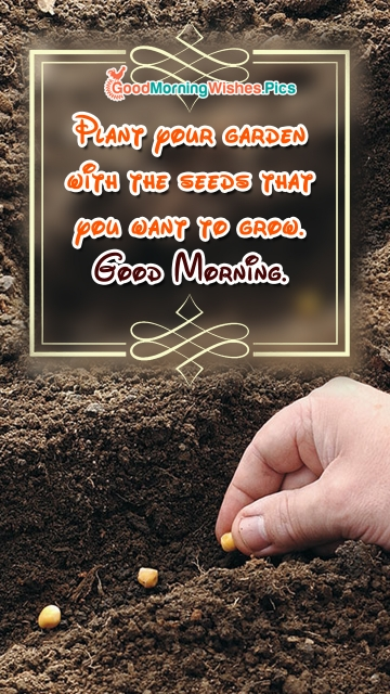 Plant Your Garden With The Seeds That You Want To Grow. Good Morning