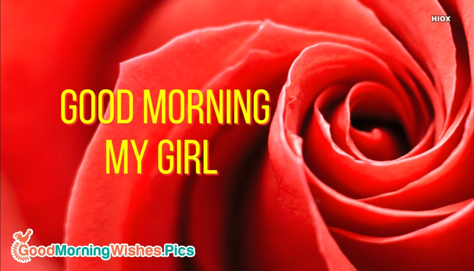 Red Rose Morning Wishes For Girlfriend