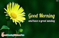 Happy Holiday Morning Quotes for Whatsapp