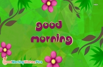 Happy Morning Flower Images