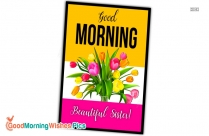 Good Morning Beautiful Pictures