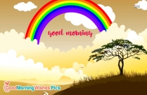 Good Morning My Rainbow