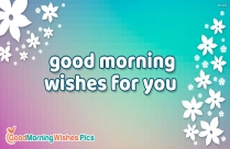 Good Morning Wishes For You