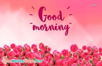 Good Morning Wishes With Beautiful Roses