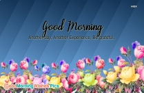 Good Morning Wishes With Quotes In English