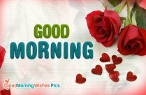 Good Morning With Red Rose