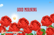 good morning red rose images with love