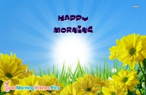 Happy Morning Flowers