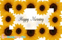 Happy Morning Yellow