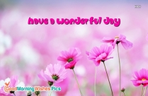 Have A Wonderful Day Wallpaper